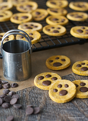 Homemade Paw Print Dog Treats