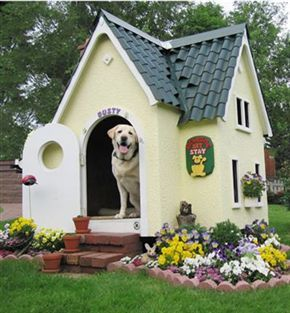 10 Doghouses that will blow your mind